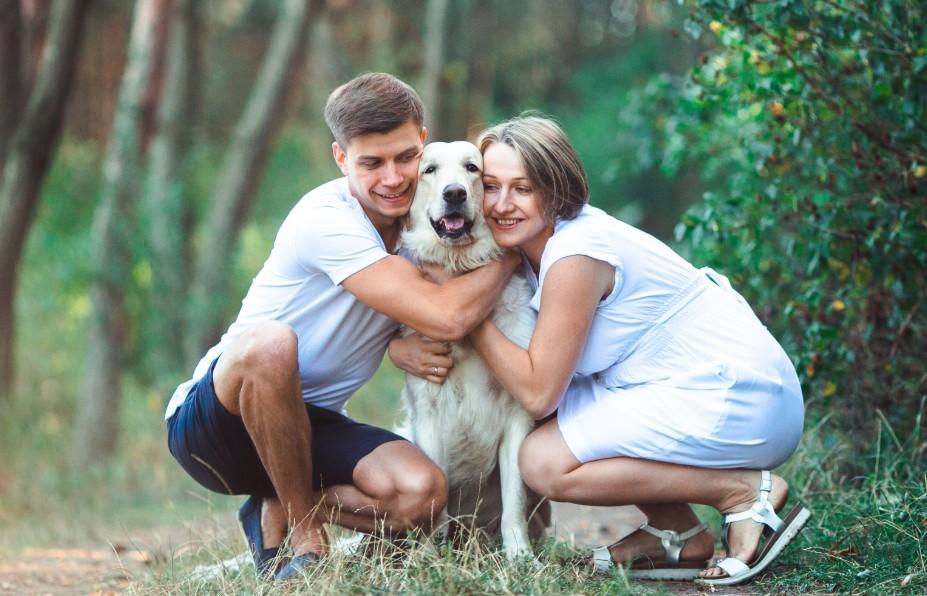 Departure Pets - Pet Travel